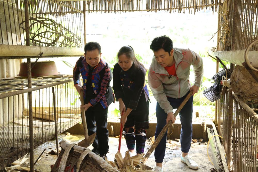 蔡国庆霍尊沿街卖鸡遇滑铁卢 鸡中贵族如何飞出大山