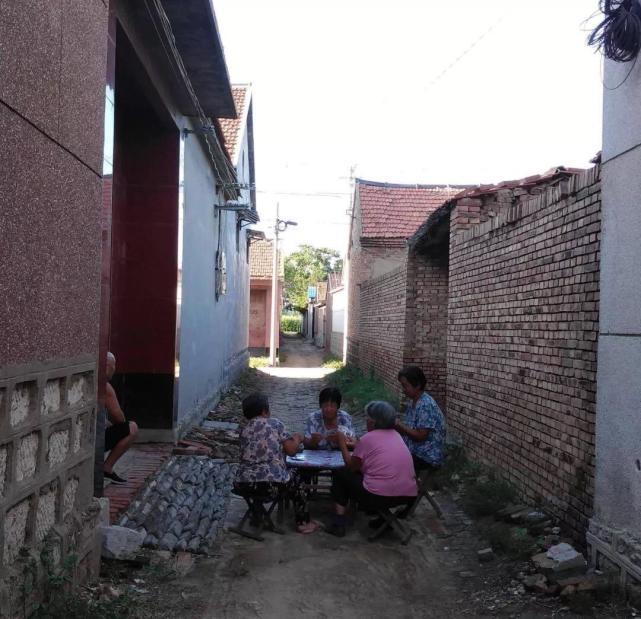 实地访山东新媒体村:农妇做自媒体收入破万 平均工资比上海还高