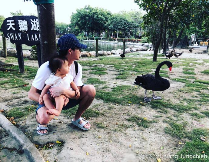 江宏杰抱女儿超近看天鹅 爱酱小脚踩爸爸略显紧张