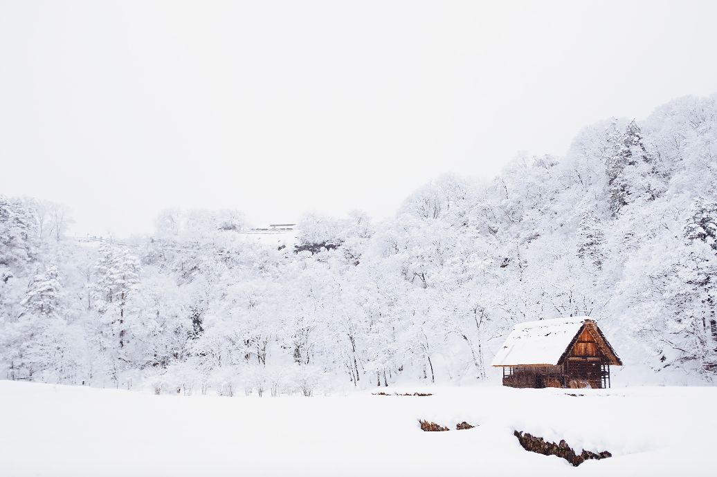 """这个土味山村一下雪就美成了"""""""