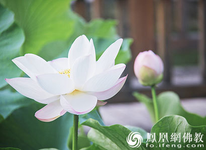 http://www.weixinrensheng.com/yuer/73065.html