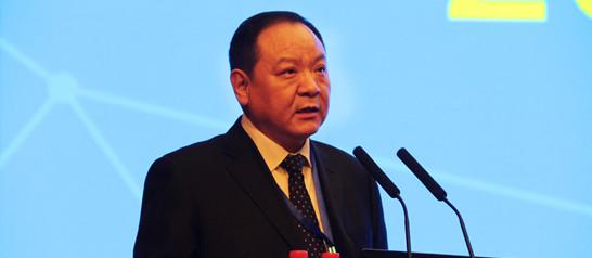 山东省妇产医院王谢桐教授讲话