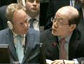 中英联合国掀