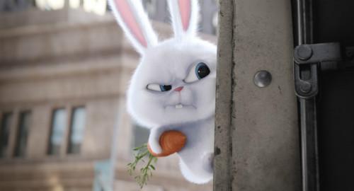"""娱乐  贱萌的兔子""""黑老大""""小白 陈佩斯就是被这种""""反差萌""""的角色魅力"""