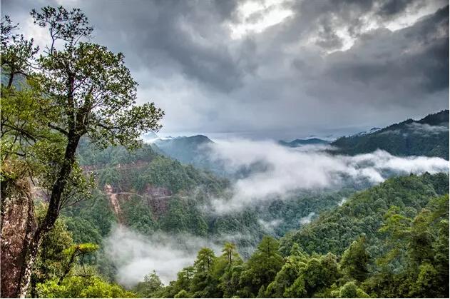 广东第一峰风景区位于南岭国家自然保护区