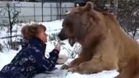 屌爆了!实拍俄罗斯美女喂棕熊吃饭 还当场玩亲亲