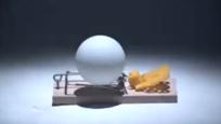 老鼠夹上放乒乓球,这个创意绝了
