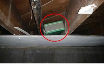 男子在房屋地下室发现绿箱子 打开后顿时惊住了