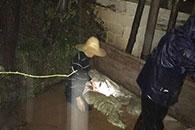 危急时刻 长沙岳麓区七旬老党员跳下水堵住漏口