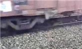 火车呼啸而过 小狗毫无畏惧的卧在铁轨正中