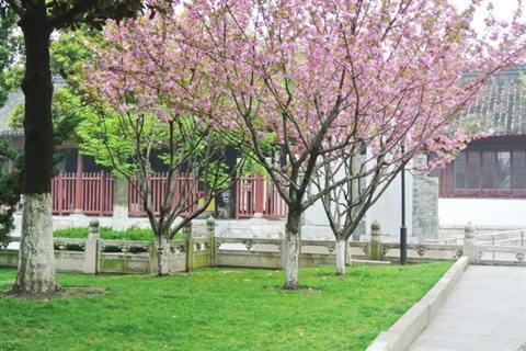 紫阳书院旧址