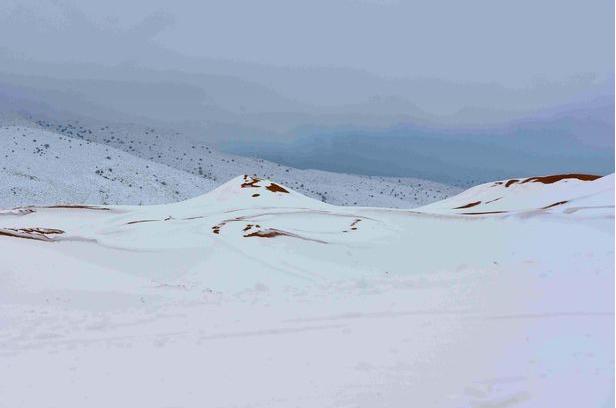 """""""全球最热""""的撒哈拉沙漠下雪了……"""