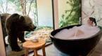"""全球最""""兽性""""酒店:美女洗澡被熊围观"""