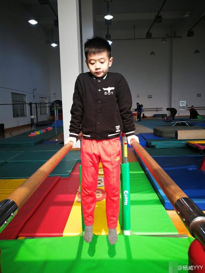 子承父业!杨阳洋正式练习体操 年底将参加比赛(图)