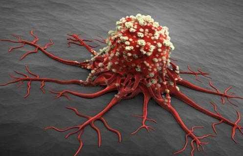 不想身体里出现癌细胞,这6种食物就别再吃