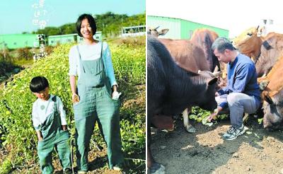 高考状元珠海种地7年记 人大硕士扎根乡村开荒种菜
