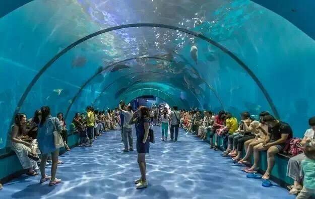 青岛康静海洋生物科技有限公司