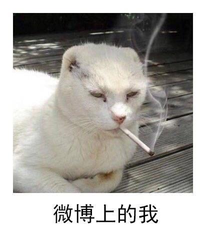 囧图170811:不同社交平台上的我,扎心了