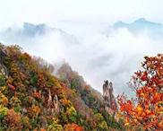 西泰山五彩斑斓的秋