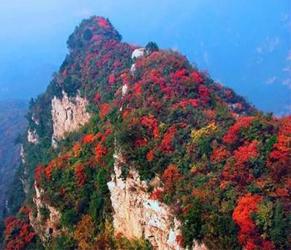 青天河:岭上红叶开 静待君来采