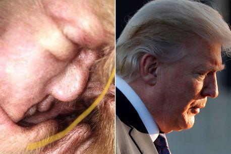 狗主人在小狗耳朵里发现特朗普的脸 100%还原