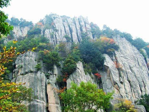 线路三:天台山国家森林公园 公园位于汉台区武乡镇,辖天台山,哑姑山