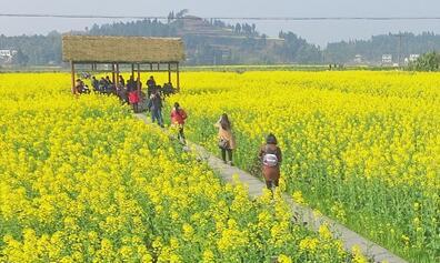重庆市将打造乡村旅游发展试点示范区
