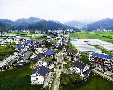 中央农村工作会议前瞻:乡村振兴战略有望实质性推进