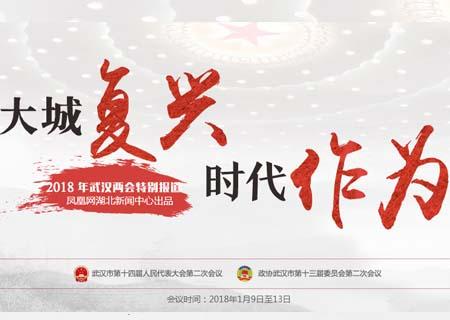 回顾:大城复兴 时代作为——2018武汉两会特别报道