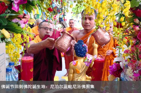 佛誕節回到佛陀誕生地:尼泊爾藍毗尼浴佛圖集