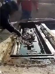 古墓开棺 内藏3尸骨和黑色液体