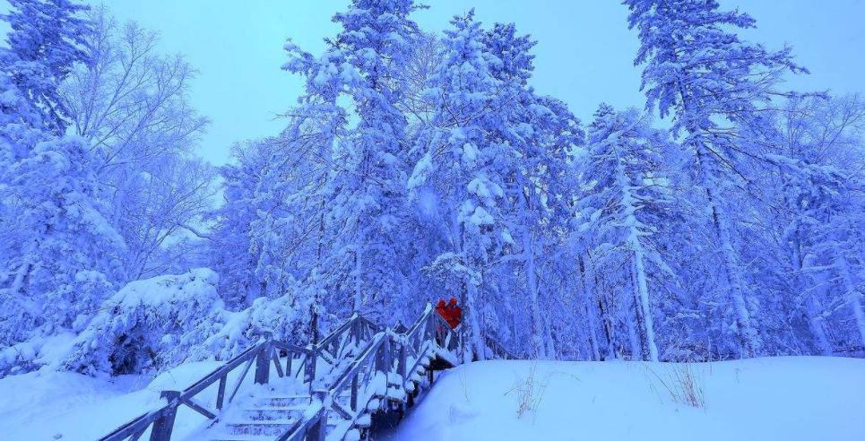 黑龙江冰雪旅游