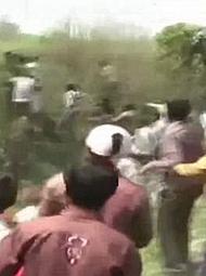 印度:看到食人老虎拼命逃亡的人群