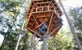 22 岁小伙在9米高树上建树屋,每天蹬自行车爬树进屋