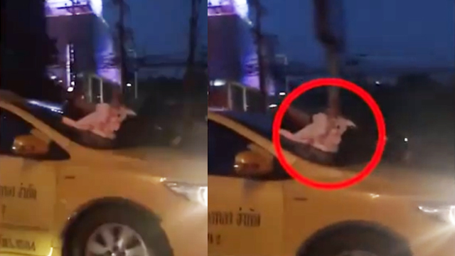 女子拦出租被拒爬上车头玩手机 司机全然无视继续驾驶