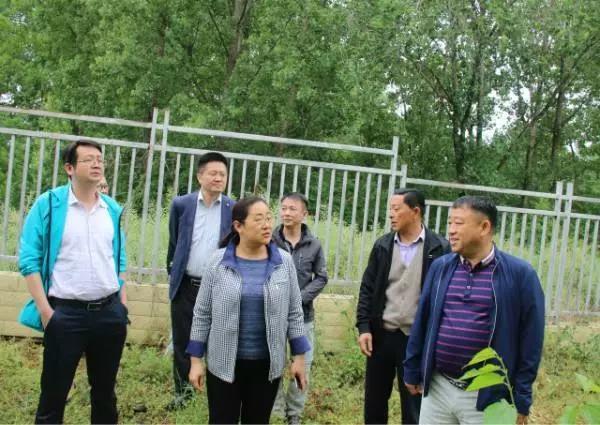 http://www.hfzowoo.cn/yulexiuxian/4746.html