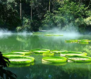 """秀山生态环境质量实现三个""""新提升"""""""