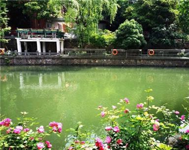 杭州首个夜跑河道要来了!它在你家边上吗