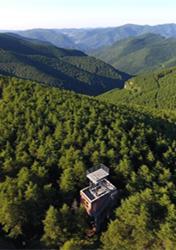 """太岳山上的""""天然氧吧"""""""