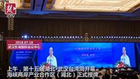 湖北武汉台湾周开幕,全国第三家海峡两岸产业合作区落户湖北