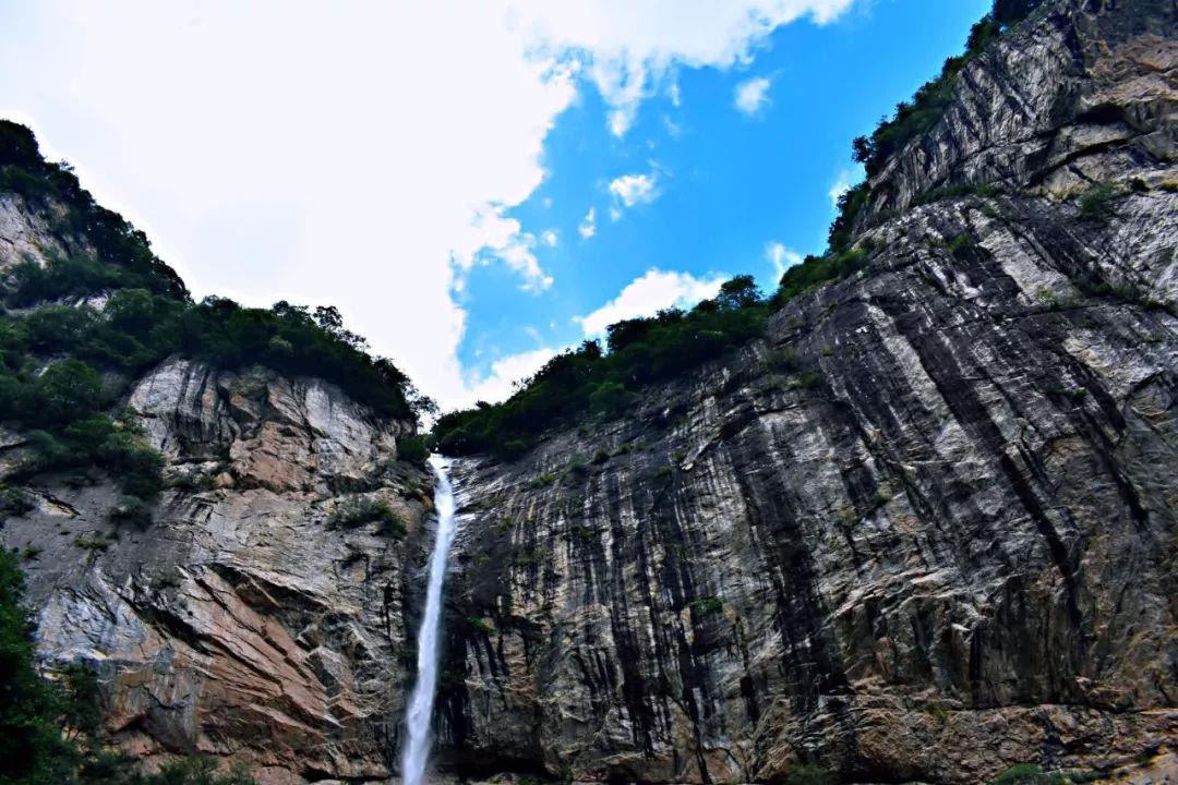 太平国家森林公园第二届森林音乐节盛大开启_陕西频道