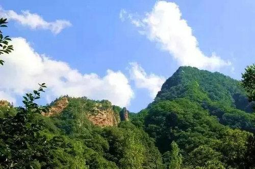杨山自然风景区植被保护完好,百丈悬崖之巅原始森林遮天蔽日,千尺峭壁