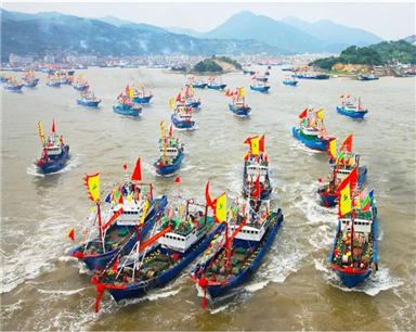 """8月17日""""开渔集市活动""""因台风延期举行"""