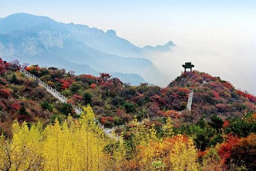 春晖遍四方,桃李满天下,秋天是丰收的季节,秋日云台也将迎来最一年之
