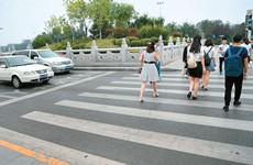 """西安市8月份""""车不让人""""交通违法行为通报"""