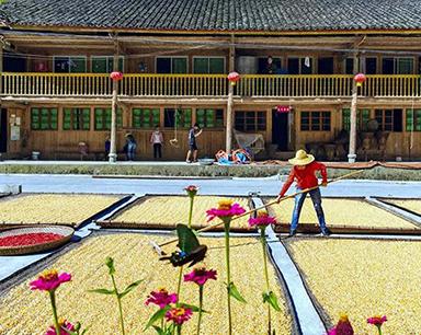 >重庆农民喜迎首个中国农民丰收节
