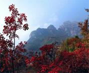 不去太行大峡谷 你将错过今年最惊艳的秋色