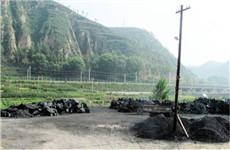 陕西省渭南市和榆林市快速整治环境污染问题