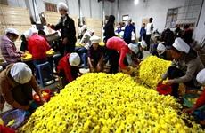 陕西省商务厅大力开展电商精准扶贫助脱贫攻坚