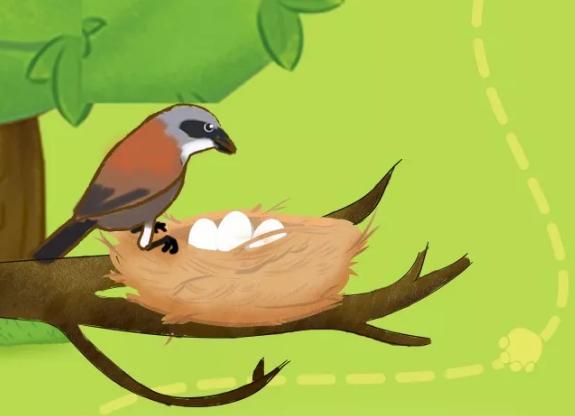 """在喜宝农场,到处可见各种精致的鸟巢。屋顶上、树梢间、屋檐下,让这些珍稀的鸟儿们得以生息繁衍下来。 聚会临近尾声, 动物们互相道别后, 又回到了自己的岗位、巢穴。农场上微风轻拂绿草茵茵,一切又回归平静, 动物们的故事仍在继续, 喜宝会一直保护好这些神奇动物"""",让更多的人享受这份自然的美好。 【免责声明】本文为企业宣传商业资讯,仅供用户参考,如用户将之作为消费行为参考,凤凰网敬告用户需审慎决定。"""